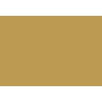 Logo-Yvel